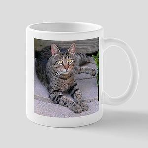 Brown Tabby Mug