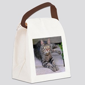 Brown Tabby Canvas Lunch Bag