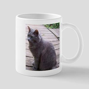 Gray Cat Mugs