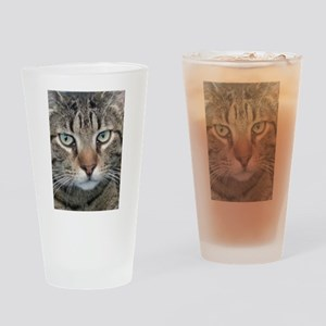Brown Tabby Cat Drinking Glass