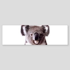 Large Happy Koala Bear Smiling Bumper Sticker