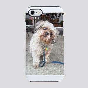 dog on blue leash at cafe co iPhone 8/7 Tough Case