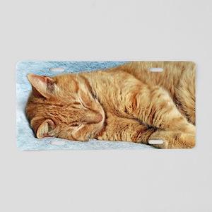 Sleepy Kitty Aluminum License Plate