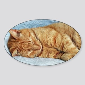 Sleepy Kitty Sticker