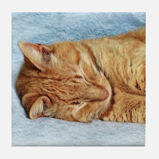 Sleepy Kitty Tile Coaster