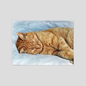 Sleepy Kitty 5'x7'Area Rug