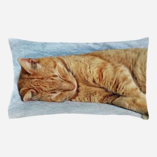 Sleepy Kitty Pillow Case