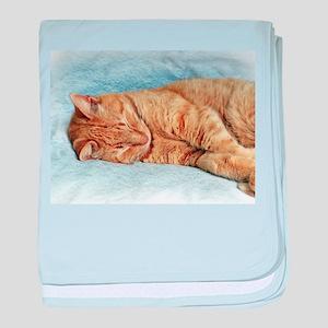 Sleepy Kitty baby blanket