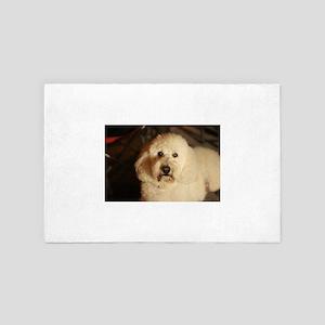 flufy white dog at night 4' x 6' Rug