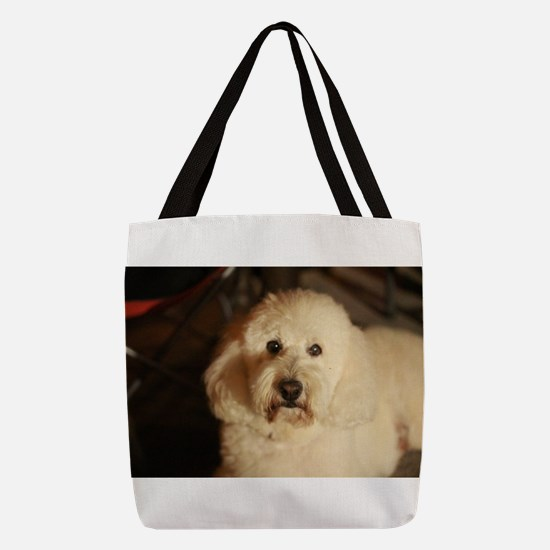 fluffy curly white dog at night Polyester Tote Bag