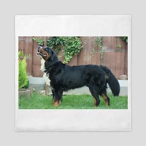 bernese mountain dog full Queen Duvet