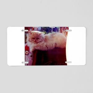 Rafferty persian cat relaxi Aluminum License Plate
