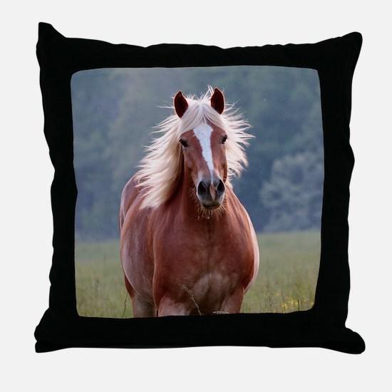 Unique Backlit Throw Pillow