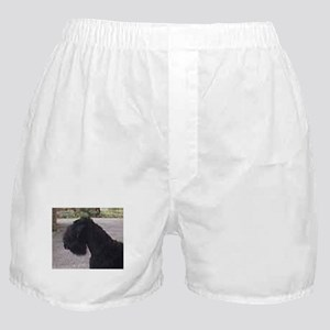 black russian terrier Boxer Shorts