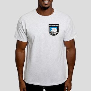Ash Grey or Light Blue T-Shirt
