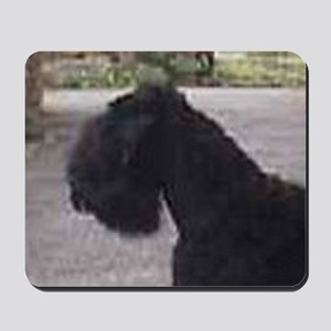 black russian terrier Mousepad