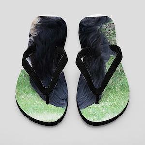 briard black Flip Flops