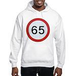 Speed sign 65 Jumper Hoody