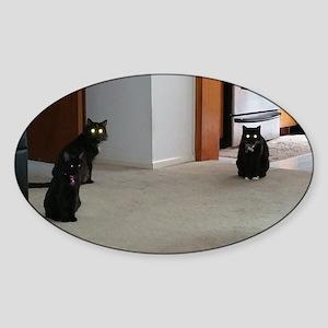 Glowing Cats Sticker