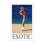 Exotic Mini Poster Print