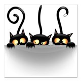 Cats Square Car Magnets