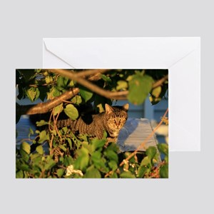 Cat in the Garden Greeting Card