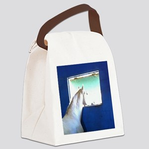 White Horse Blue Window Canvas Lunch Bag