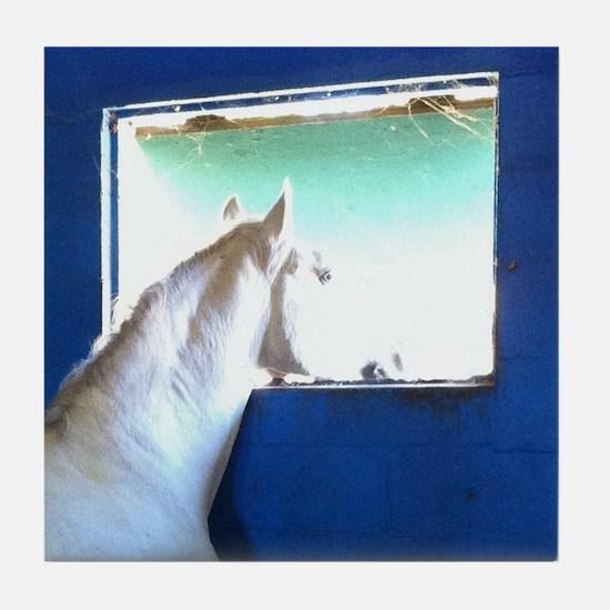 White Horse Blue Window Tile Coaster