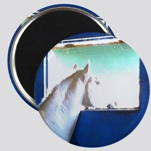 White Horse Blue Window Magnets