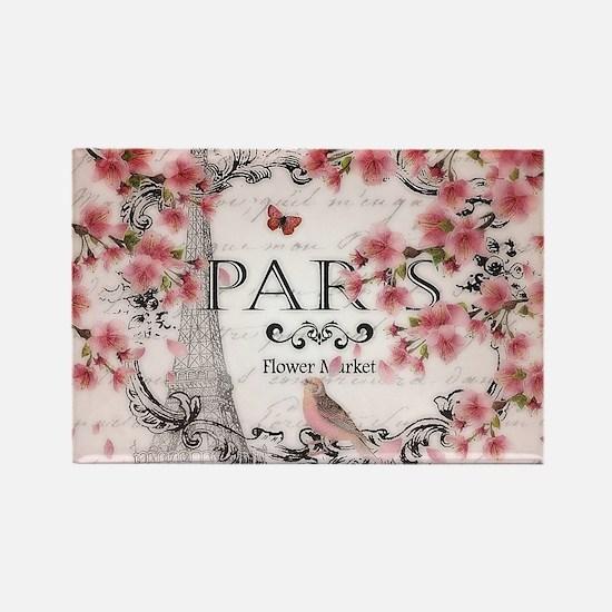 Paris spring Magnets