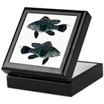 Black Sea Bass (Atlantic) Keepsake Box