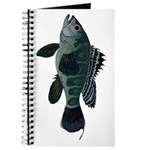Black Sea Bass (atlantic) Journal