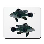 Black Sea Bass (Atlantic) Mousepad