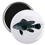 Black Sea Bass (Atlantic) Magnets