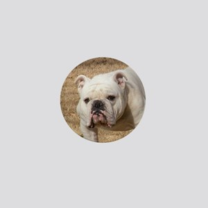 bulldog white Mini Button