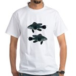 Black Sea Bass (Atlantic) T-Shirt
