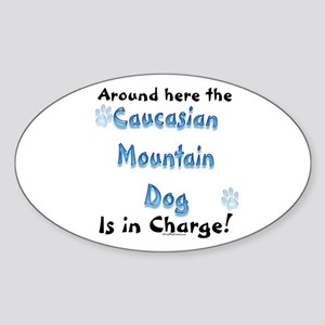 Catahoula Charge Oval Sticker