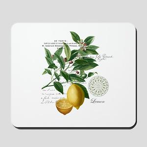 Modern Vintage Lemons Mousepad