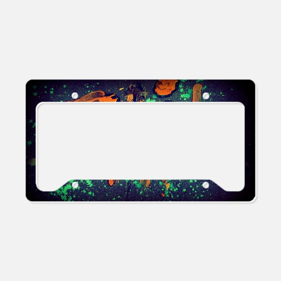 Unique Mixed media License Plate Holder