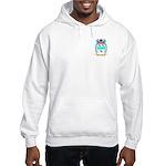Schroder Hooded Sweatshirt