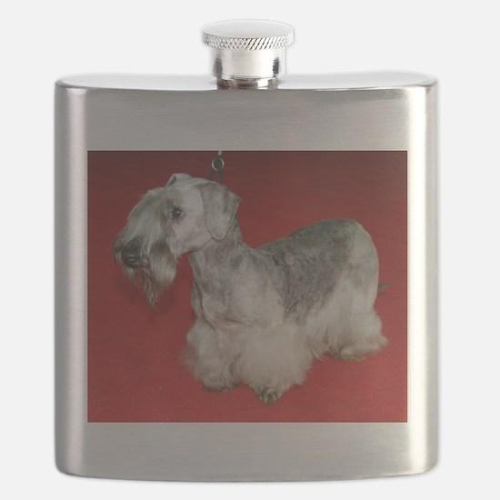 cesky terrier full Flask