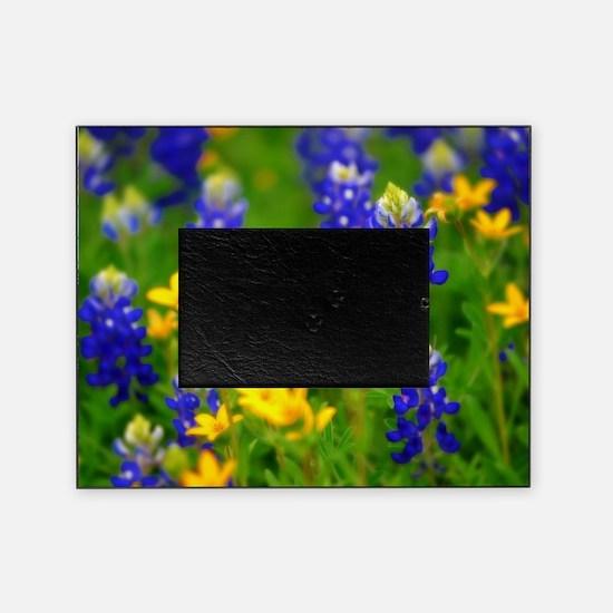 Bluebonnet Picture Frame