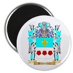 Schoenholz Magnet