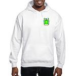 Schniers Hooded Sweatshirt