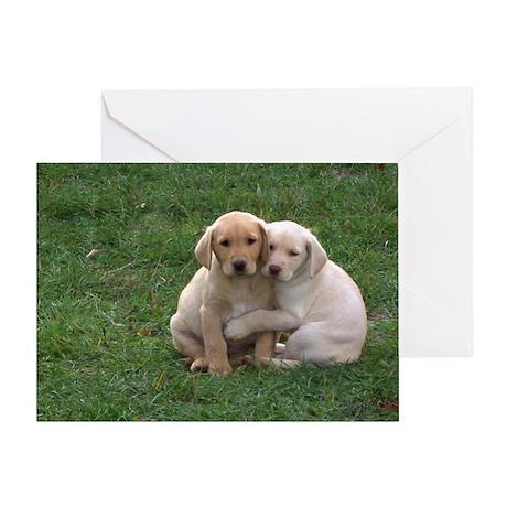 Yellow Lab Pups Greeting Card