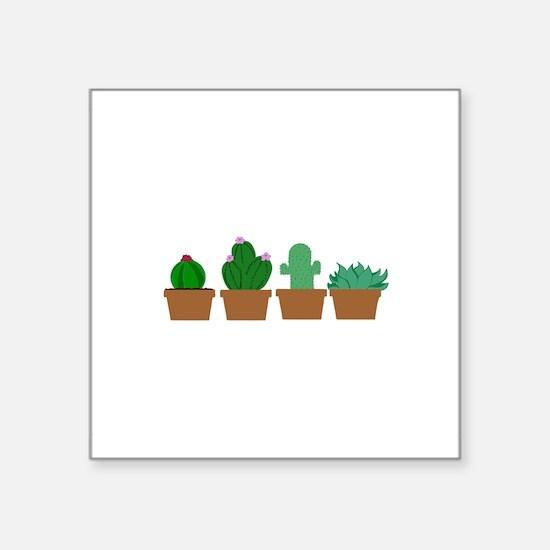 Cacti Sticker