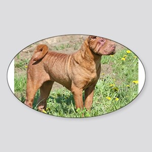 chinese shar pei full Sticker