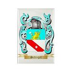 Schlegel Rectangle Magnet (100 pack)