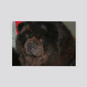 chow chow Magnets