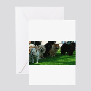 chow chow Greeting Cards